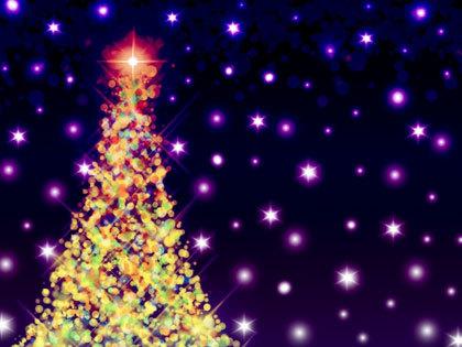 「クリスマスツリーハウス」での幻想的なキャンプをプレゼント!