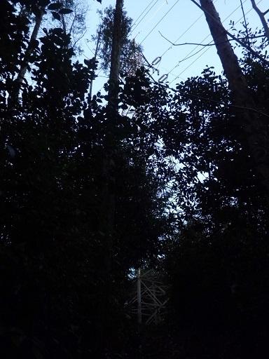 77kV電源名古屋瀬戸線43号