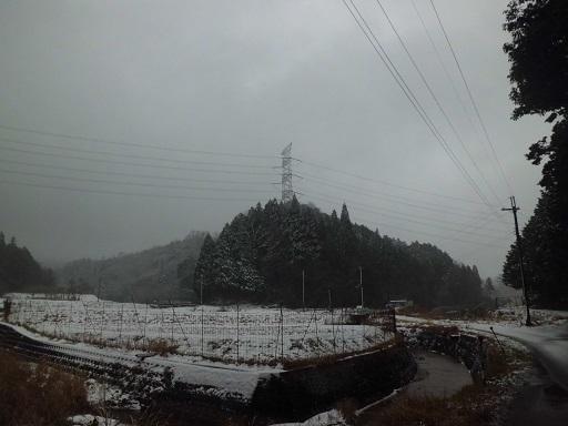南近江線24号
