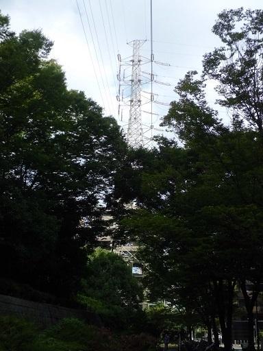 横浜火力北線31号