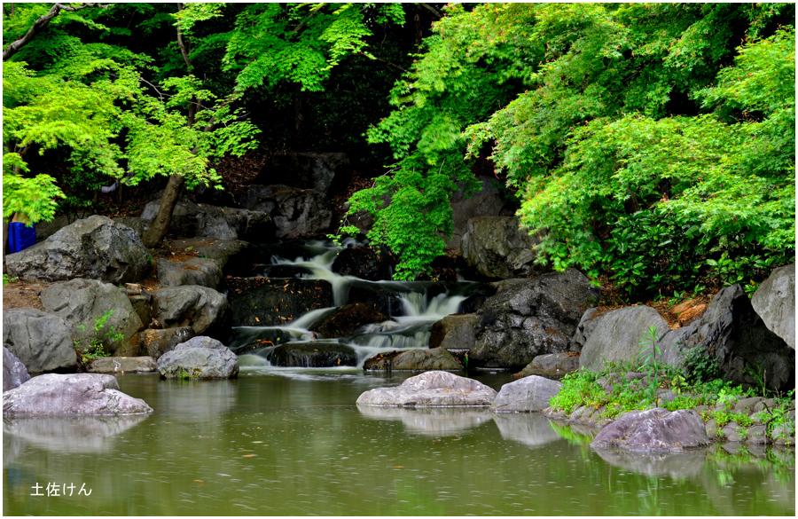 鶴見緑地2