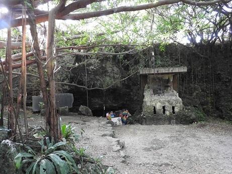 チビチリガマ 写真1