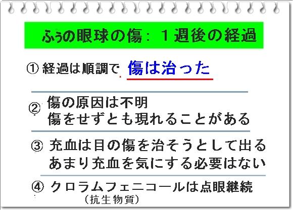 003bIMG_7876.jpg