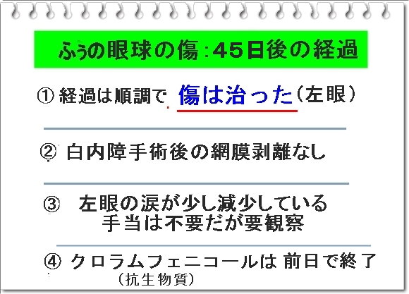 008bIMG_7876_20181202234413df5.jpg
