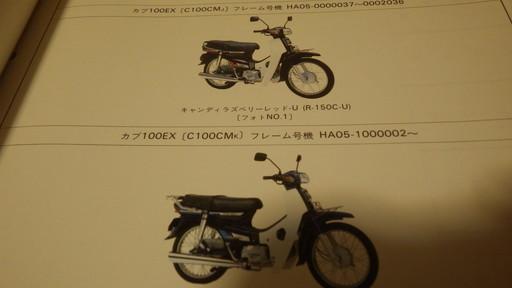 IMGP9136.jpg