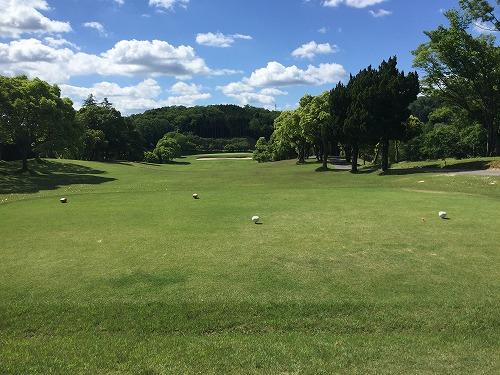 golf43-03.jpg