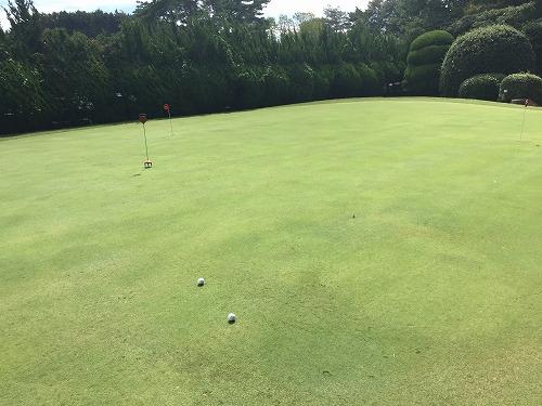 golf55-03.jpg