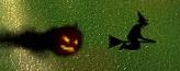 ハロウィン ロード