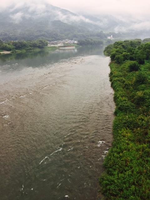 【釣果情報】徳島県 吉野川