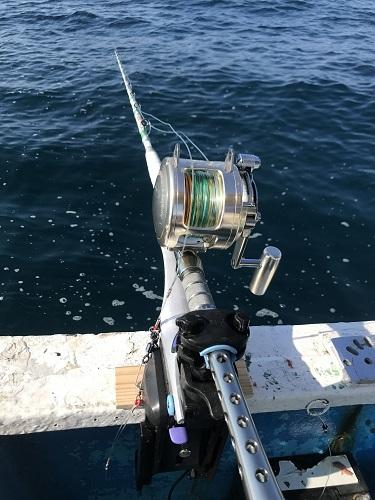【釣果情報】大物泳がせ釣り
