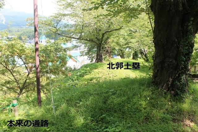 IMG_6562.jpg