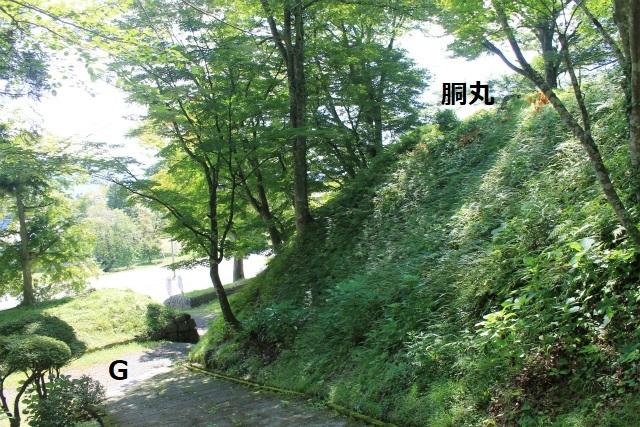 IMG_6633.jpg