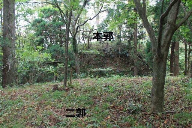IMG_7000.jpg