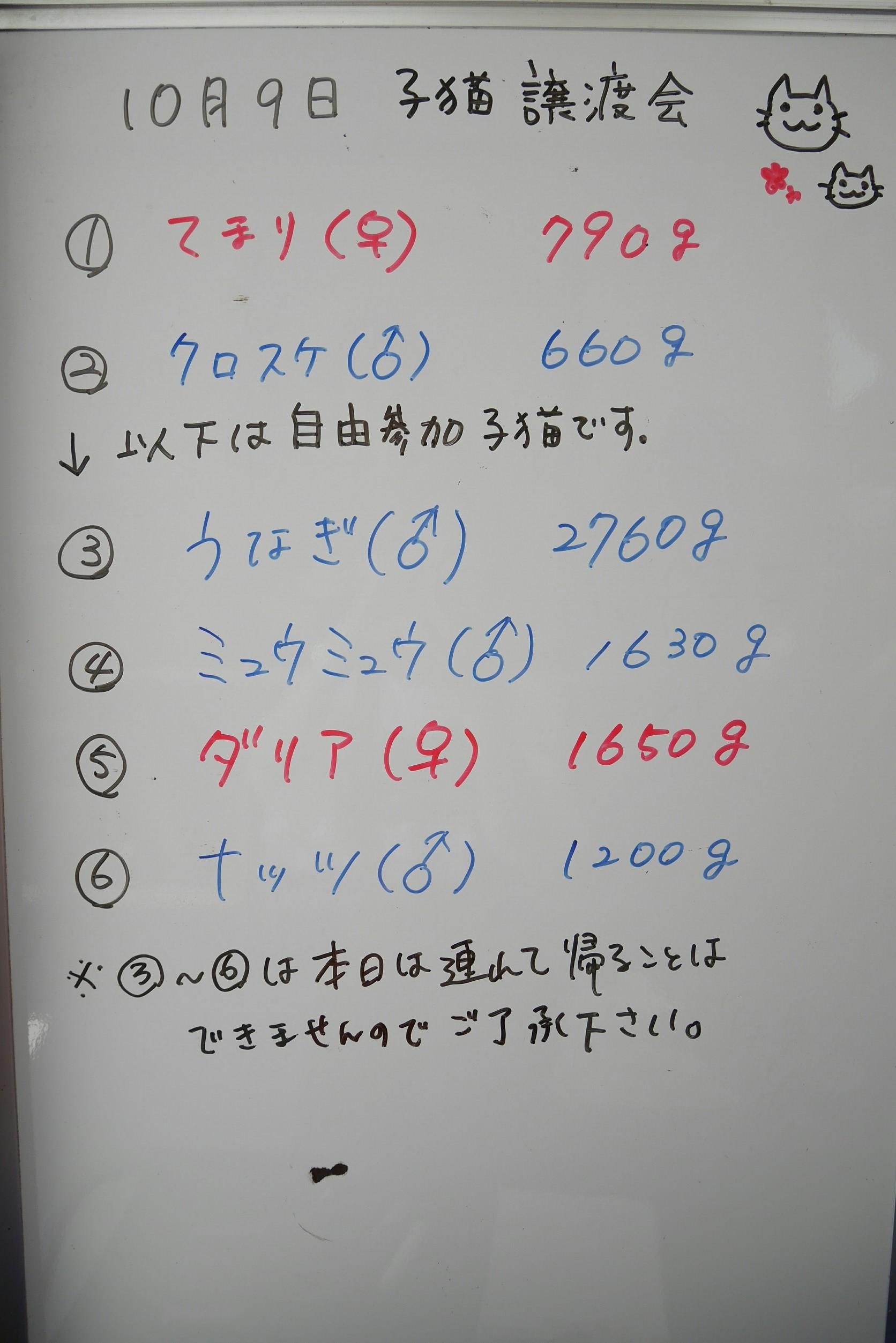 2018101101215374c.jpg