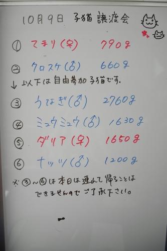 2018109 譲渡会_181010_0025