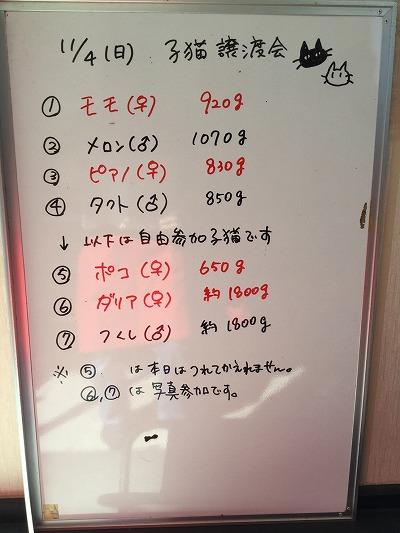 2018114 譲渡会_181104_0027