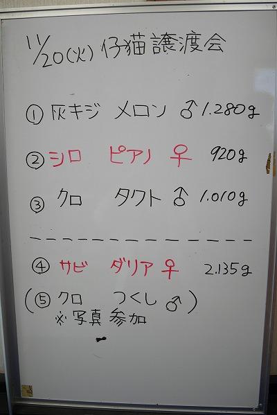20181120 譲渡会_181122_0012