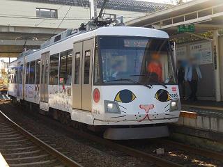 gotokuji_3.jpg