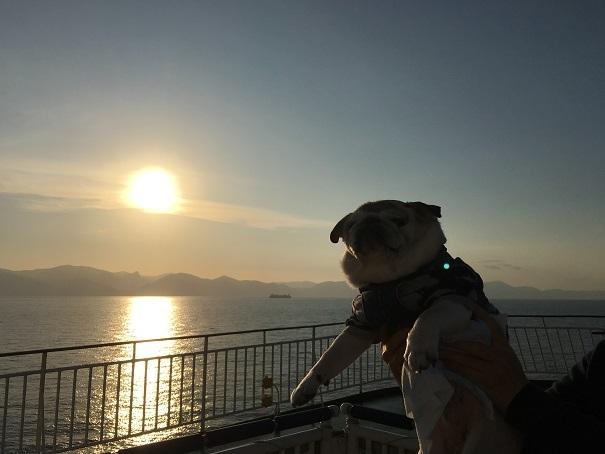 犬連れ専用デッキ20171026