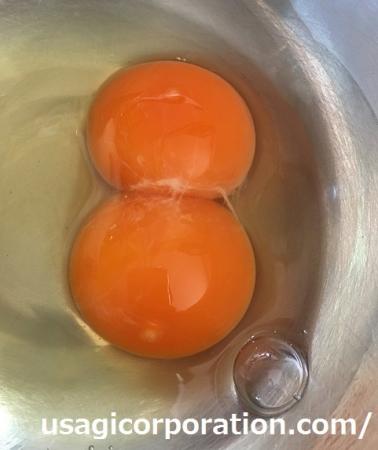 2017 0521 卵