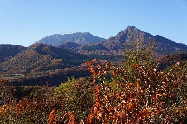 定点観測地点?鬼女台から紅葉の烏帽子岳と大山を望む