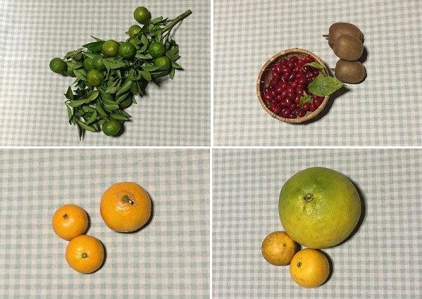 収穫物♪ 左上・シークヮーサー、右上・サンシュユとキーウィ、左下・同じ種を蒔いたのに、何故だか大きさが違う、という温州ミカンの仲間、右下・文旦とネーブル