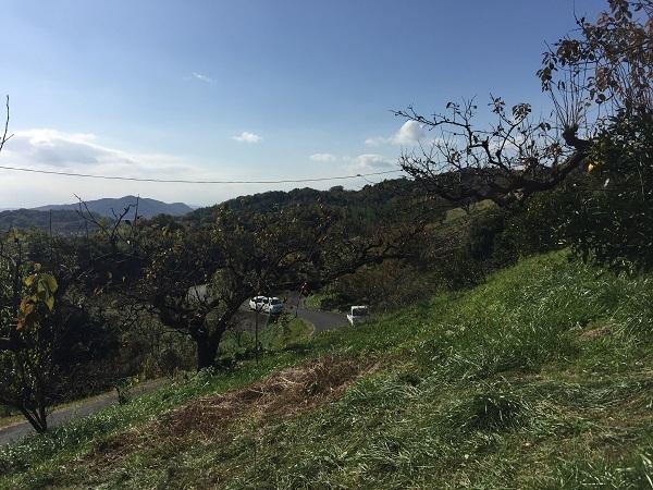 少し、高台から西南方面を望んだ景色