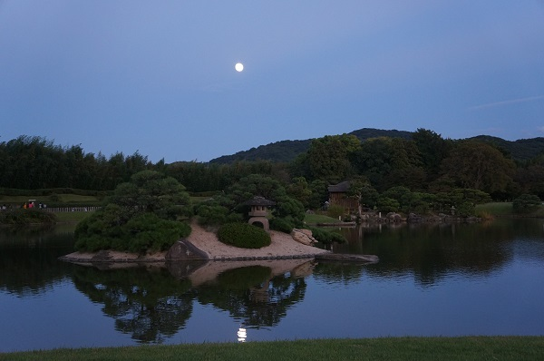 沢の池に映る月影