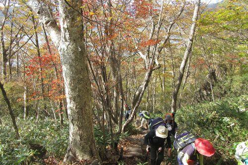 紅葉の中を登る