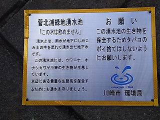 kyumi-ryoku6.jpg