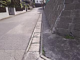 kyumi-senngokuike12.jpg