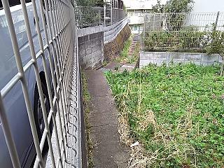 kyumi-senngokuike13.jpg