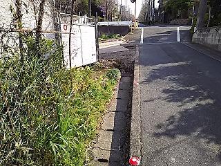 kyumi-suga2-8-5.jpg