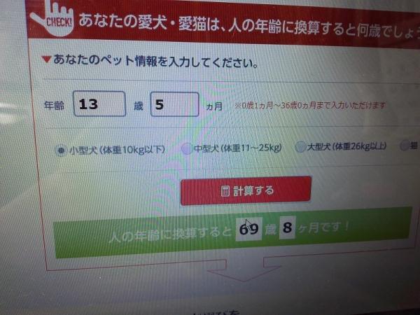 IMG_20171217_113052.jpg