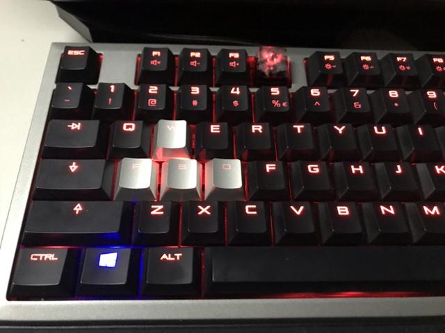 Cherry_KA026_08.jpg