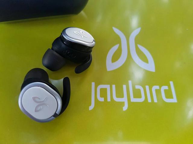 Jaybird_Run_17.jpg