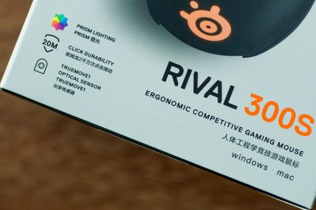 Rival_300S_03.jpg