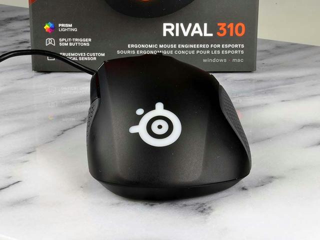 Rival_310_05.jpg