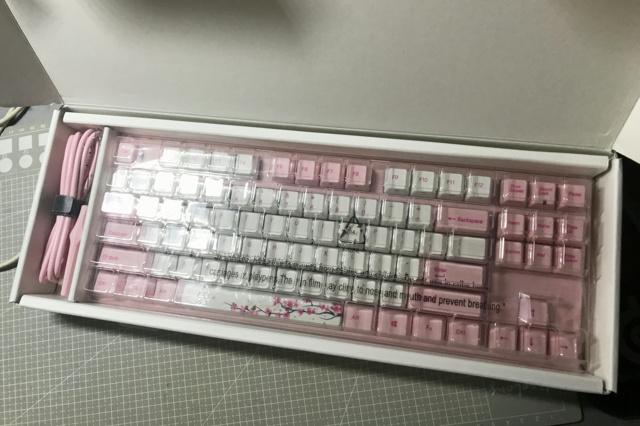VA87M_Sakura_03.jpg