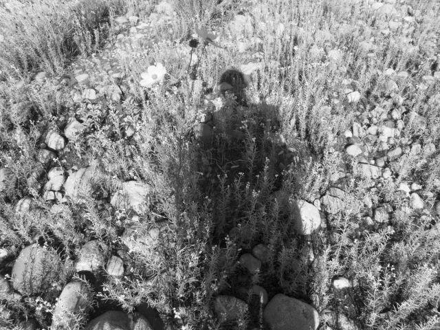 深山幽谷157d