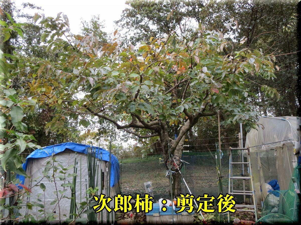1jirouG171120_009.jpg