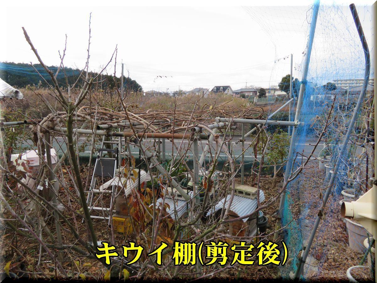 1ue_kiui171216_001.jpg