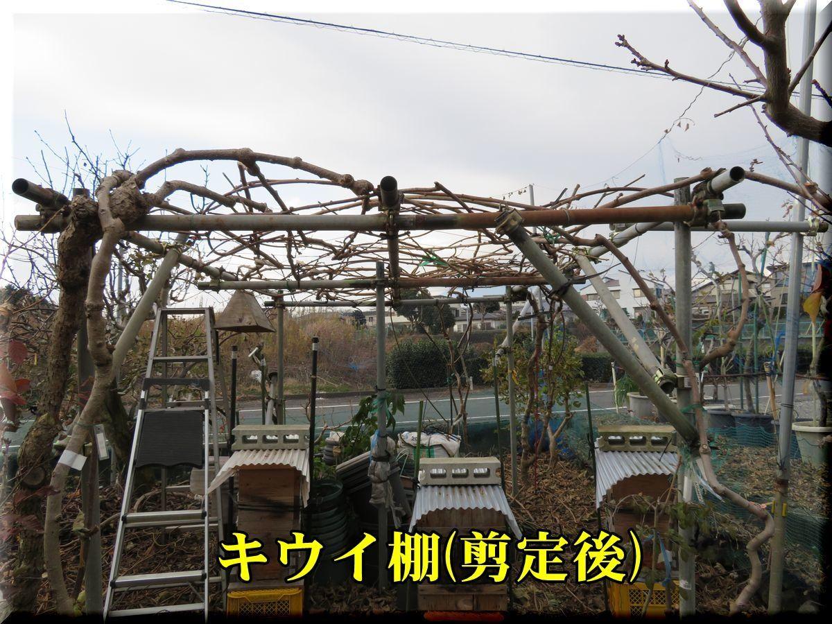 1ue_kiui171216_002.jpg