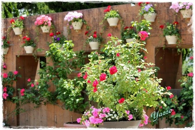 お花いっぱいの山下公園