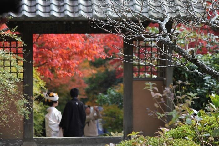紅葉とお嫁さんのきれいな海蔵寺へ