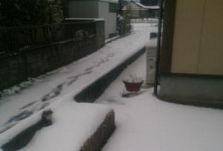 snow@201712170001.jpg