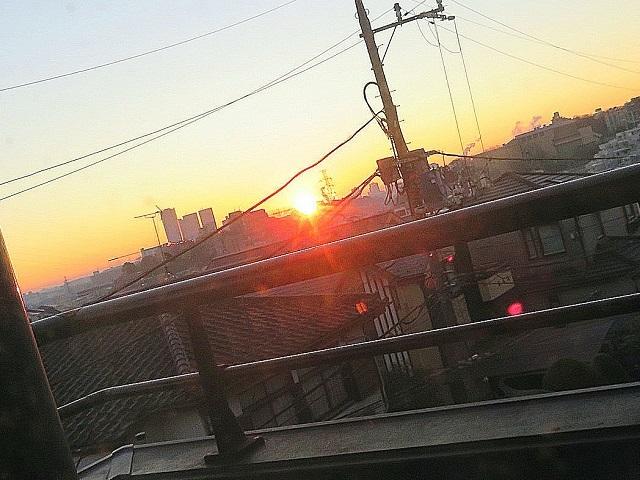 IMG_6905aaa.jpg