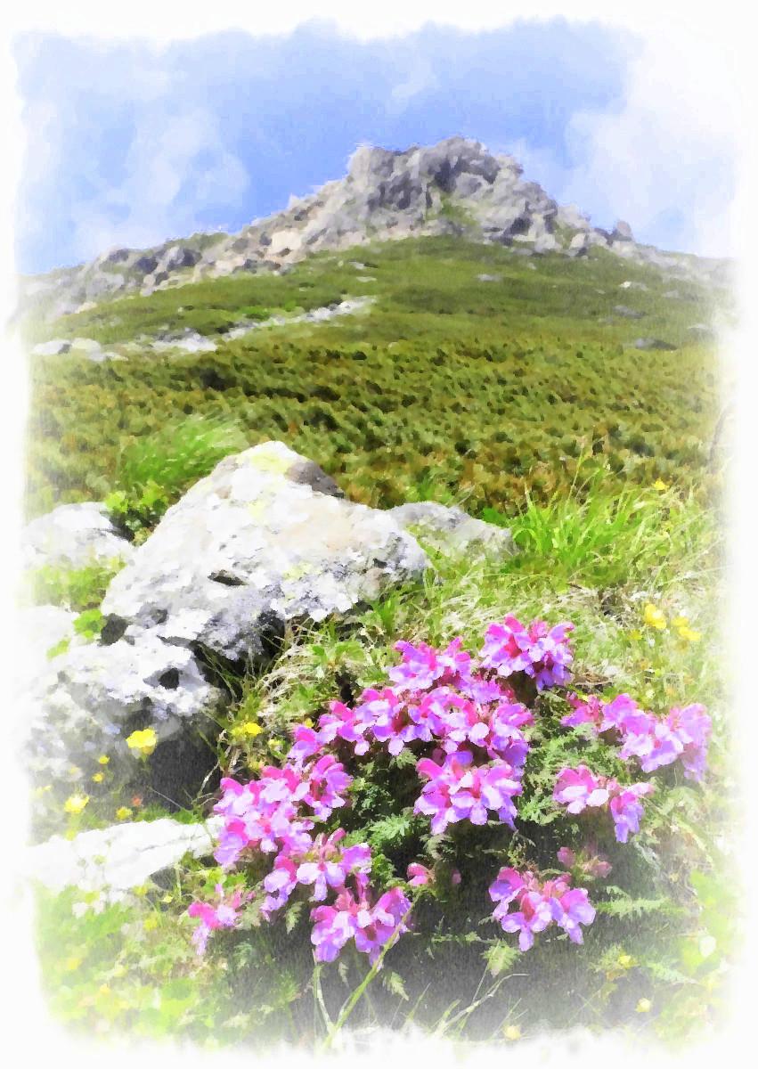 PhotoFunia-1514733063-001.jpg