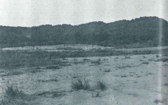 建つ前の敷地 (640x402)
