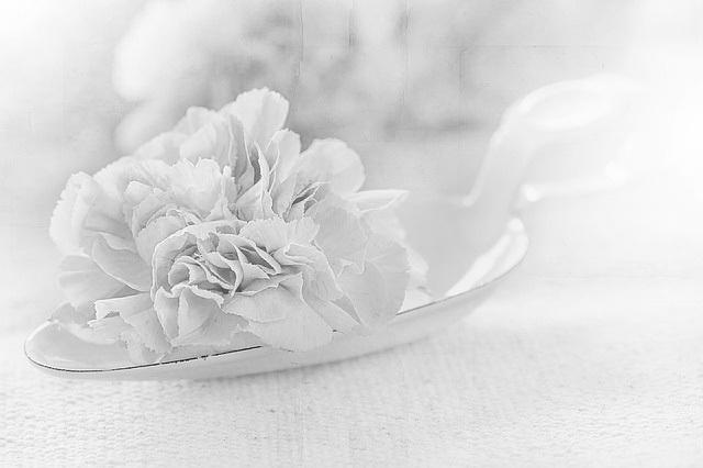 flower-1357109_640.jpg